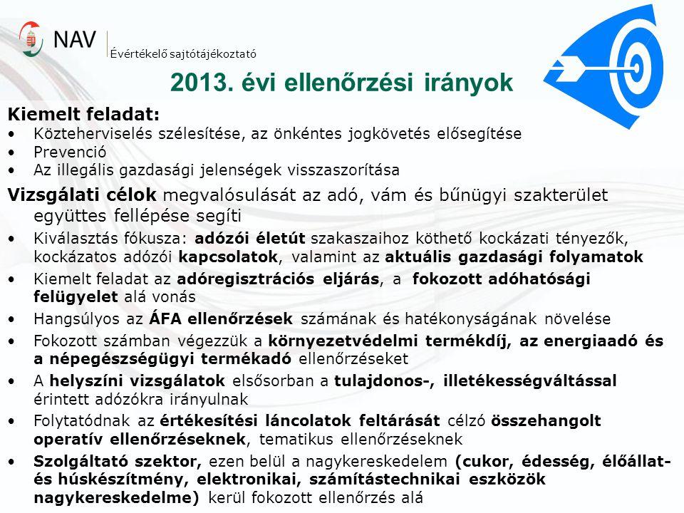 2013. évi ellenőrzési irányok