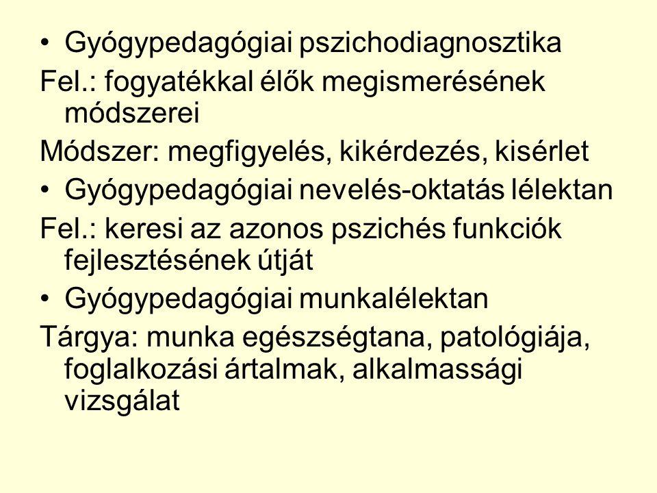 Gyógypedagógiai pszichodiagnosztika