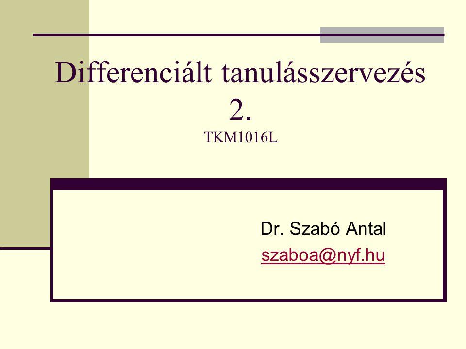 Differenciált tanulásszervezés 2. TKM1016L