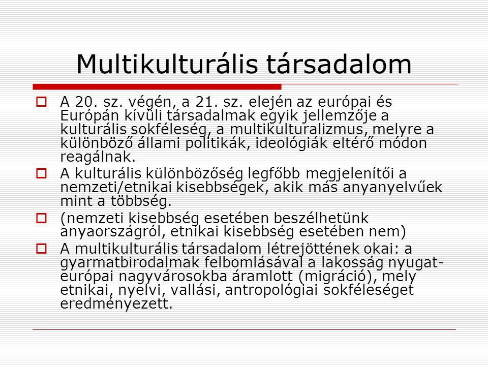 Multikulturális társadalom