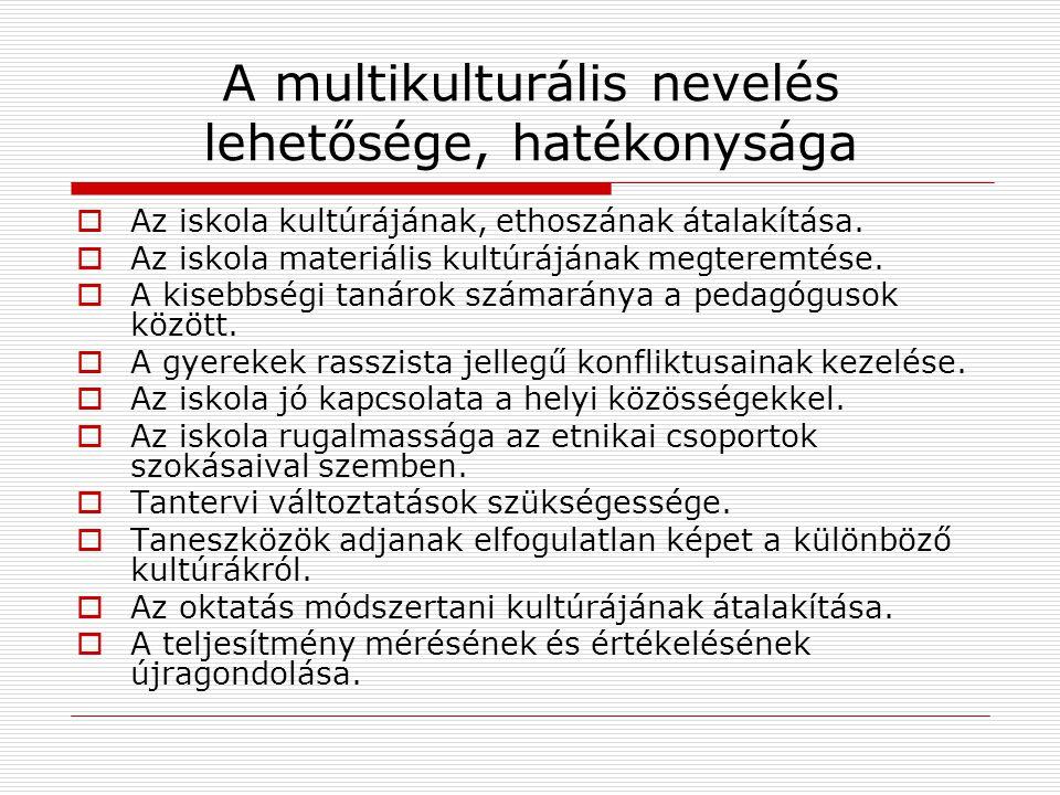 A multikulturális nevelés lehetősége, hatékonysága