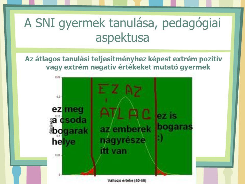 A SNI gyermek tanulása, pedagógiai aspektusa