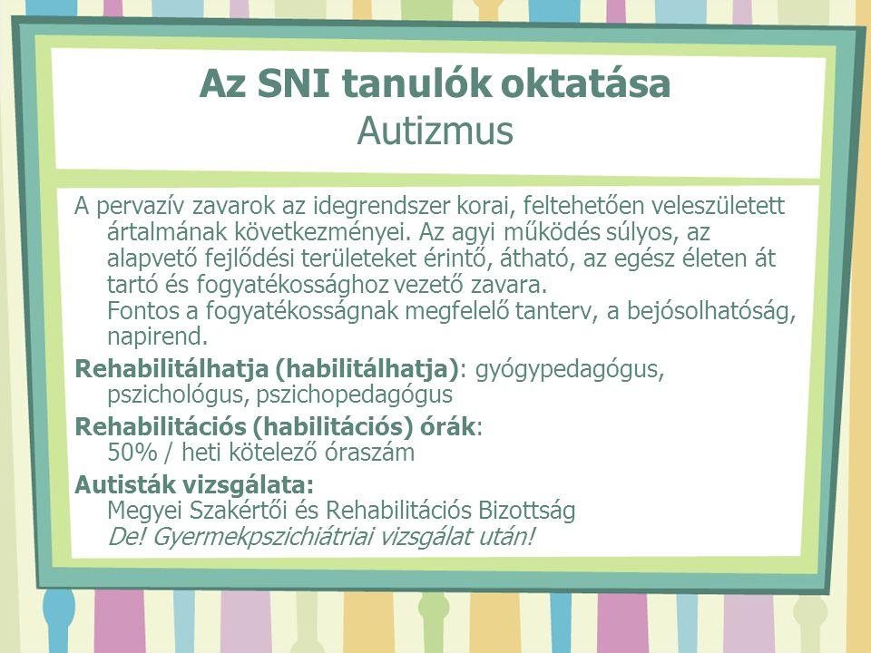 Az SNI tanulók oktatása Autizmus