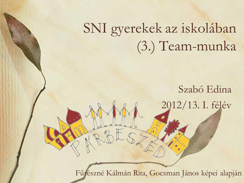 SNI gyerekek az iskolában (3.) Team-munka