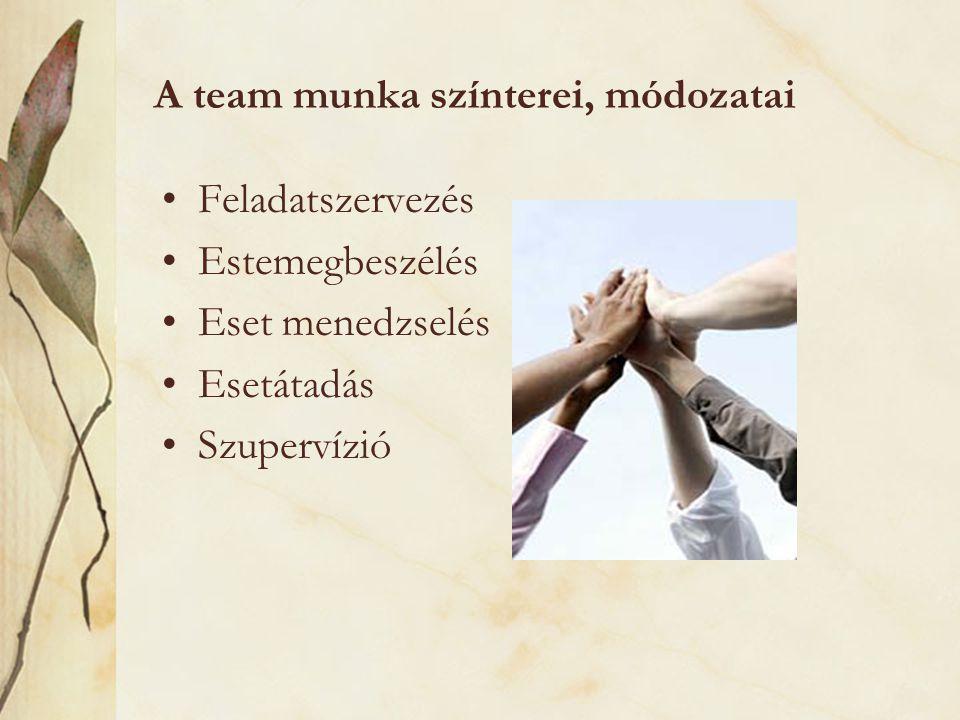 A team munka színterei, módozatai