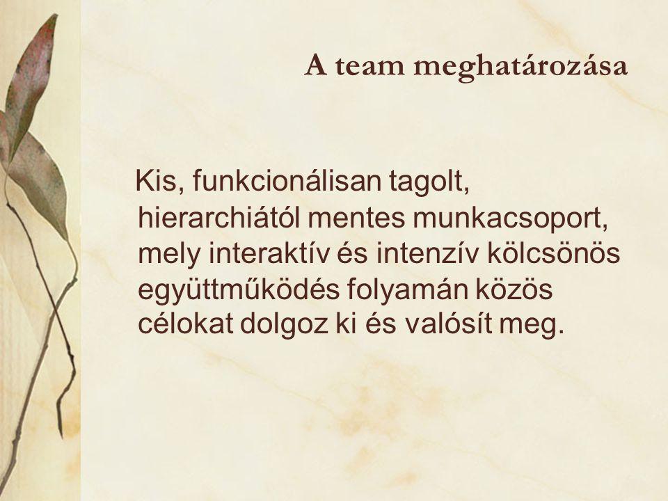 A team meghatározása