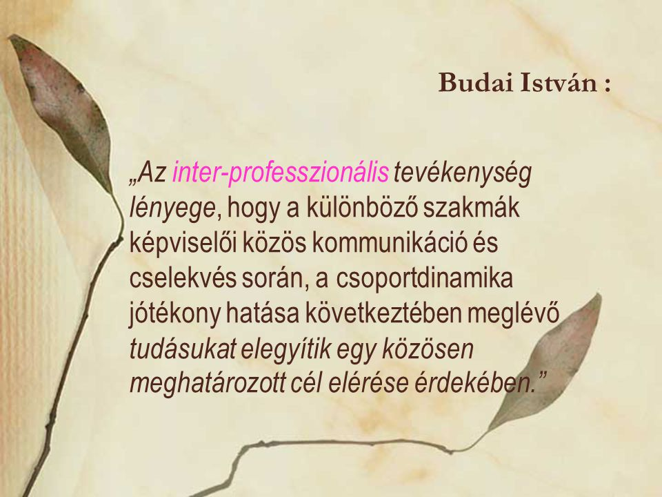 Budai István :
