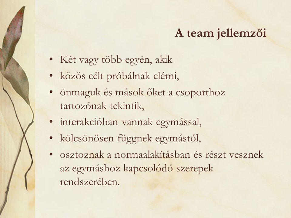 A team jellemzői Két vagy több egyén, akik
