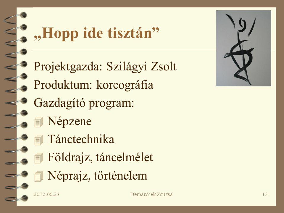 """""""Hopp ide tisztán Projektgazda: Szilágyi Zsolt Produktum: koreográfia"""