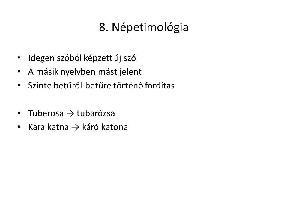 8. Népetimológia Idegen szóból képzett új szó