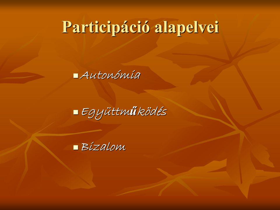 Participáció alapelvei
