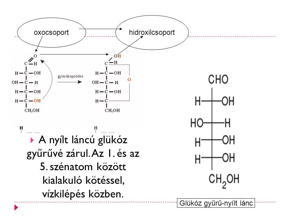 Glükóz gyűrű-nyílt lánc
