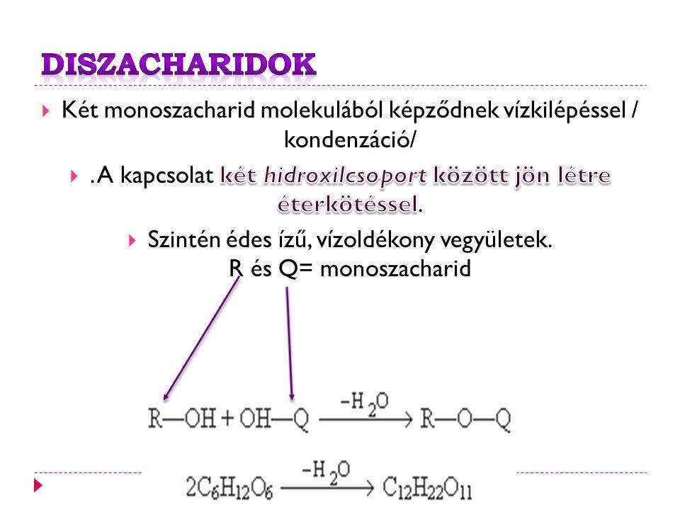 Diszacharidok Két monoszacharid molekulából képződnek vízkilépéssel / kondenzáció/