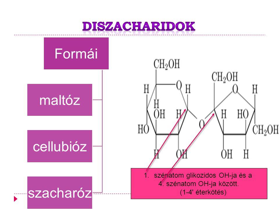 Diszacharidok szénatom glikozidos OH-ja és a