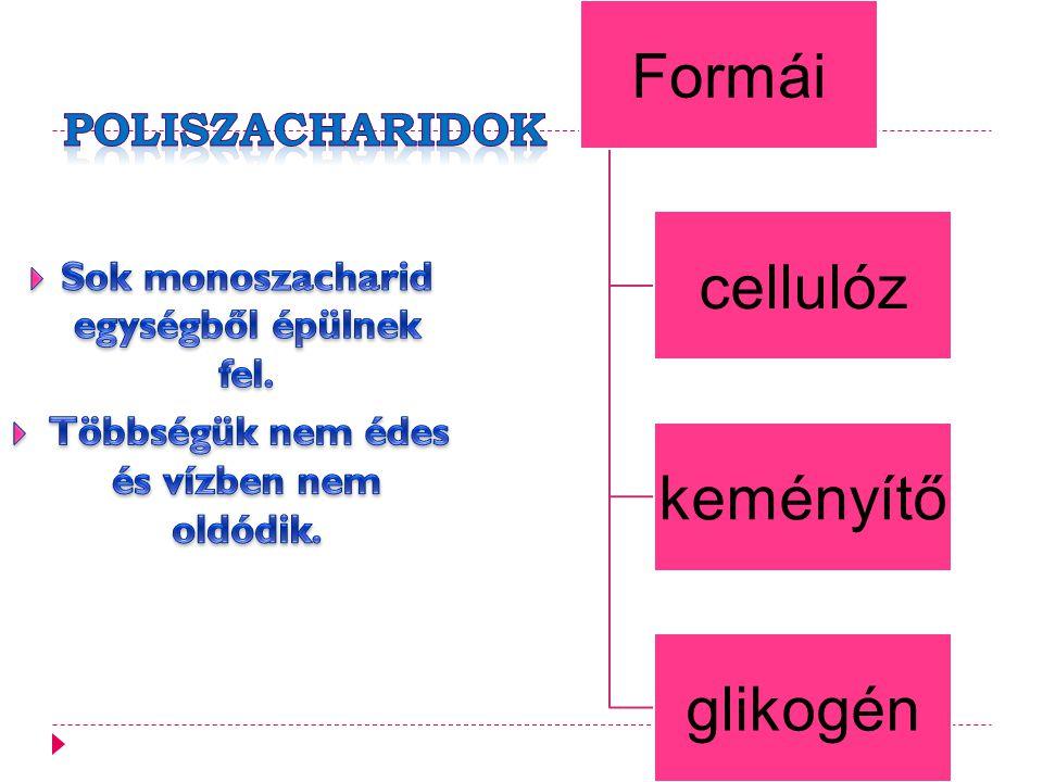 Poliszacharidok Sok monoszacharid egységből épülnek fel.