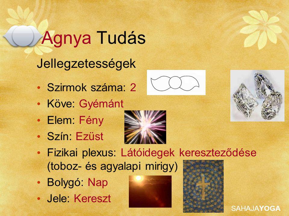 Agnya Tudás Jellegzetességek Szirmok száma: 2 Köve: Gyémánt Elem: Fény