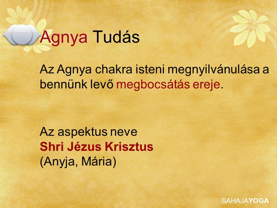Agnya Tudás Az Agnya chakra isteni megnyilvánulása a bennünk levő megbocsátás ereje. Az aspektus neve.