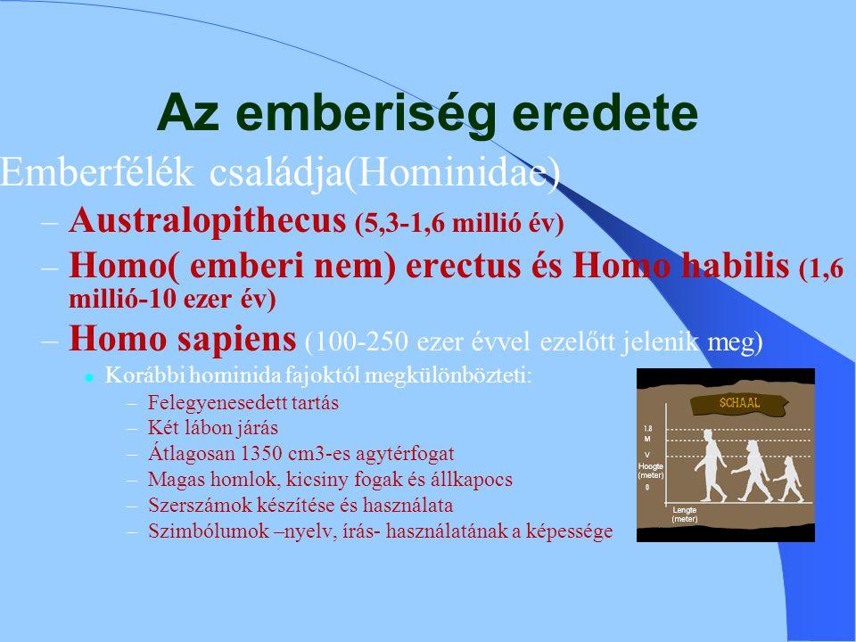 Az emberiség eredete Emberfélék családja(Hominidae)