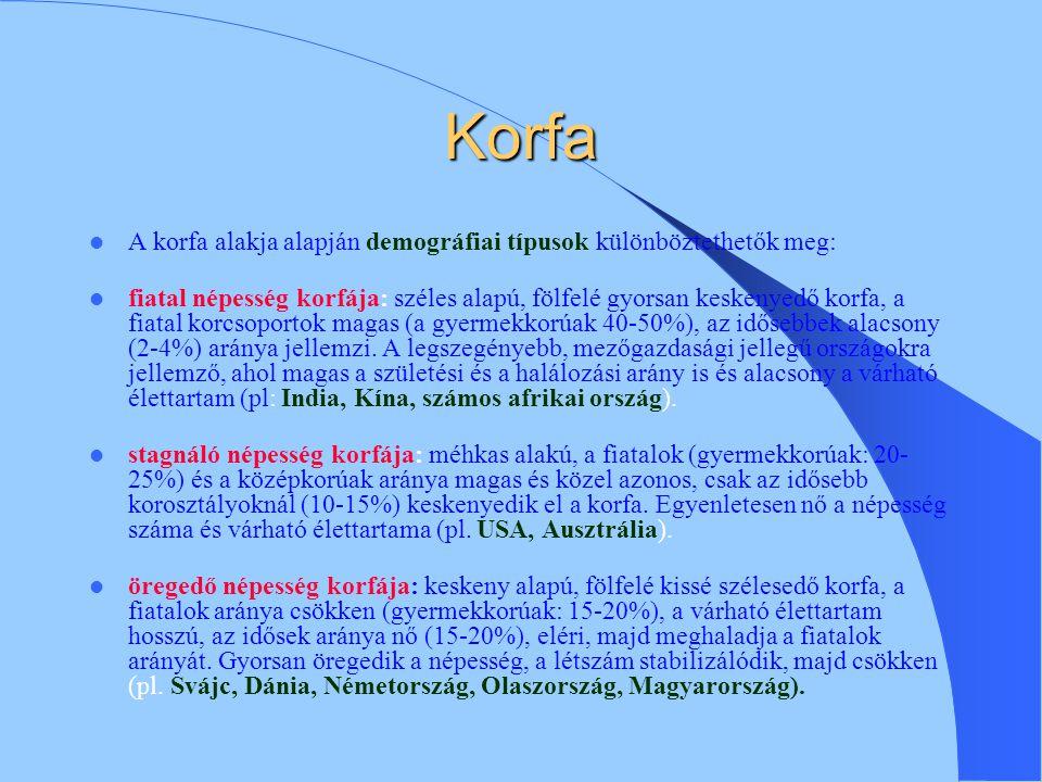 Korfa A korfa alakja alapján demográfiai típusok különböztethetők meg: