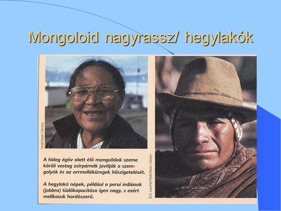 Mongoloid nagyrassz/ hegylakók