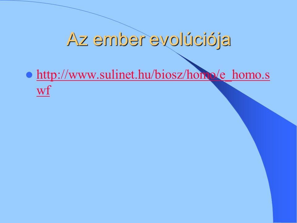 Az ember evolúciója http://www.sulinet.hu/biosz/homo/e_homo.swf