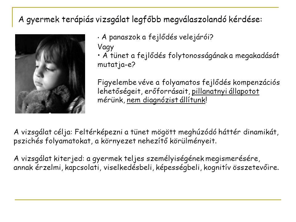 A gyermek terápiás vizsgálat legfőbb megválaszolandó kérdése: