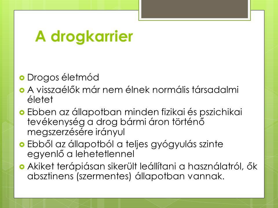 A drogkarrier Drogos életmód