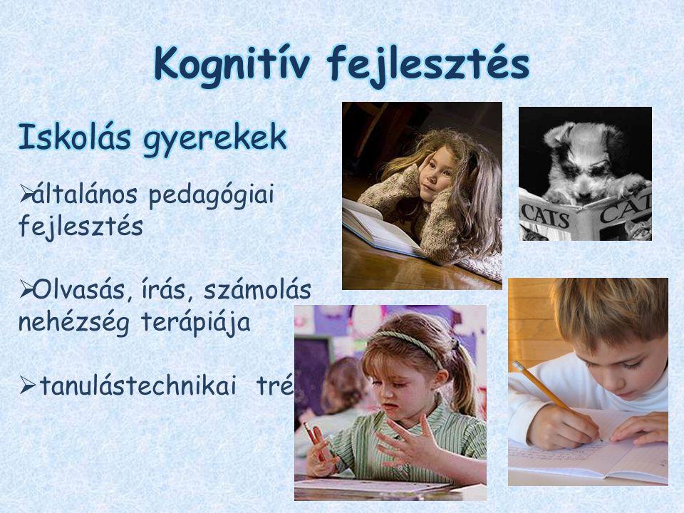 Kognitív fejlesztés Iskolás gyerekek általános pedagógiai fejlesztés