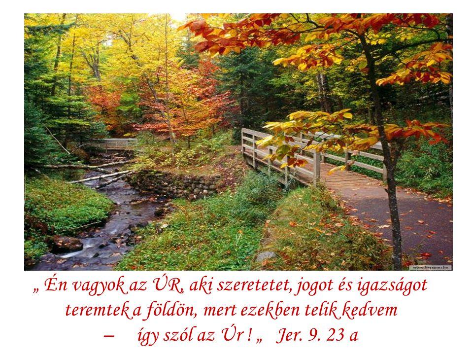 """"""" Én vagyok az ÚR, aki szeretetet, jogot és igazságot teremtek a földön, mert ezekben telik kedvem – így szól az Úr ."""