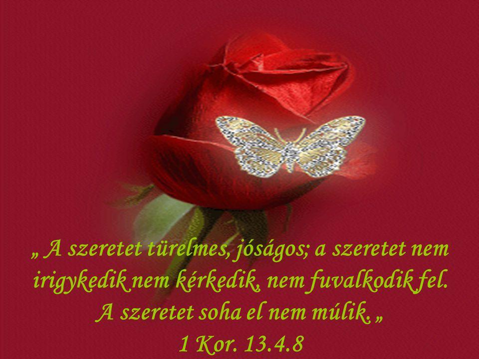 """"""" A szeretet türelmes, jóságos; a szeretet nem irigykedik nem kérkedik, nem fuvalkodik fel."""