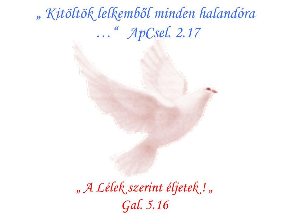""""""" Kitöltök lelkemből minden halandóra … ApCsel. 2.17"""