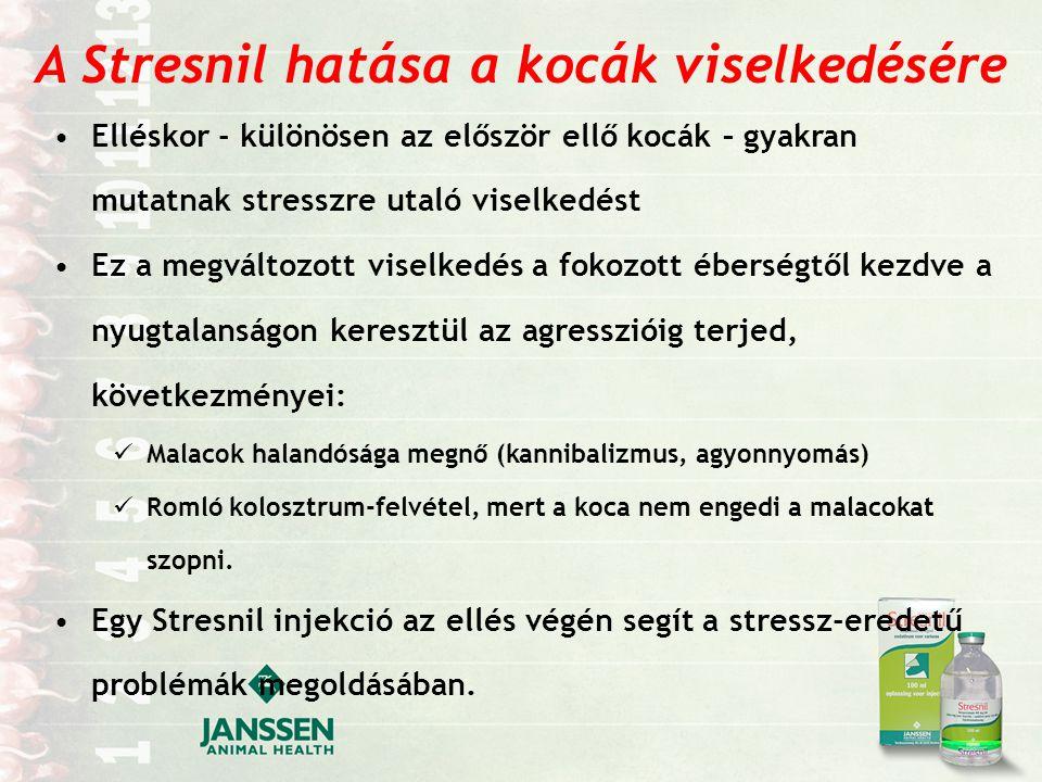 A Stresnil hatása a kocák viselkedésére