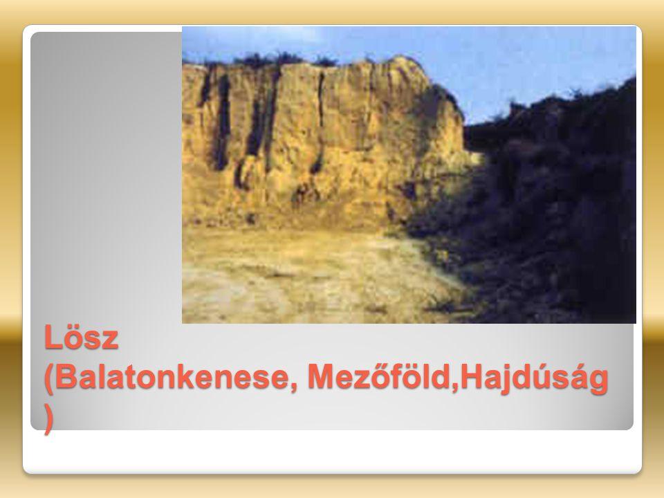 Lösz (Balatonkenese, Mezőföld,Hajdúság )