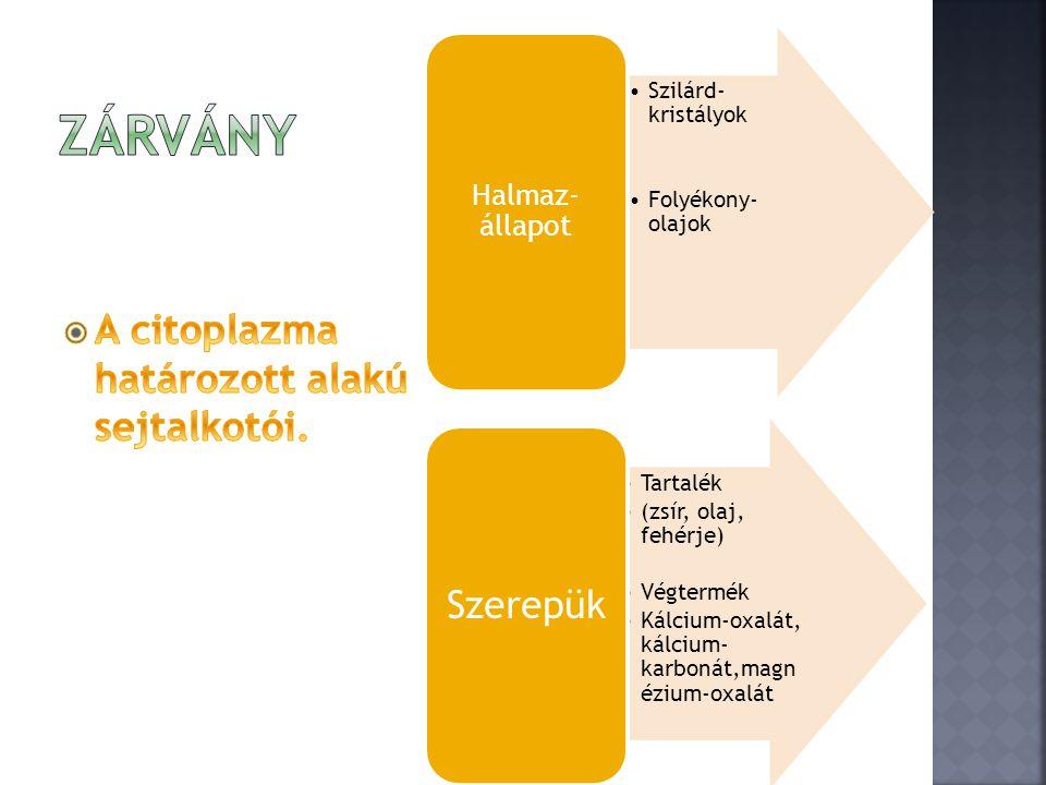 Zárvány A citoplazma határozott alakú sejtalkotói. Halmaz-állapot