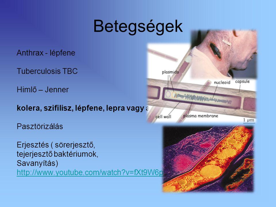 Betegségek Anthrax - lépfene Tuberculosis TBC Himlő – Jenner