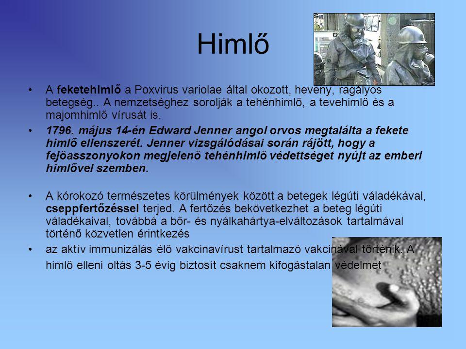 Himlő