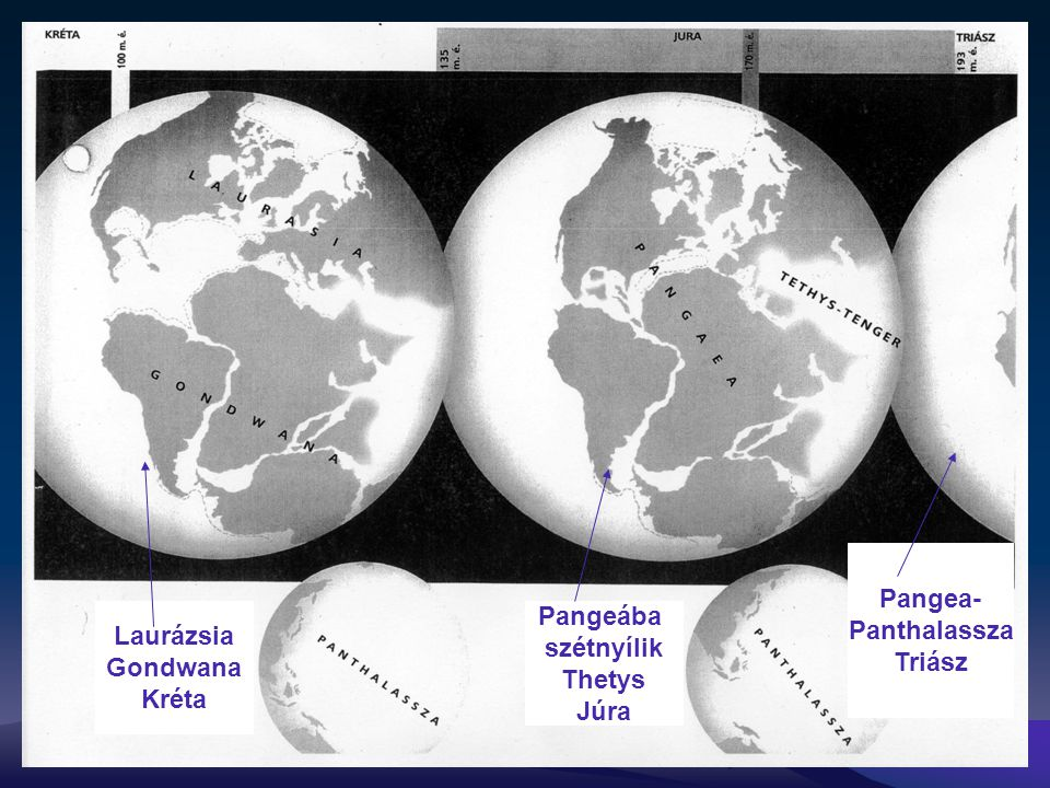 Pangea- Panthalassza Triász Laurázsia Gondwana Kréta Pangeába szétnyílik Thetys Júra