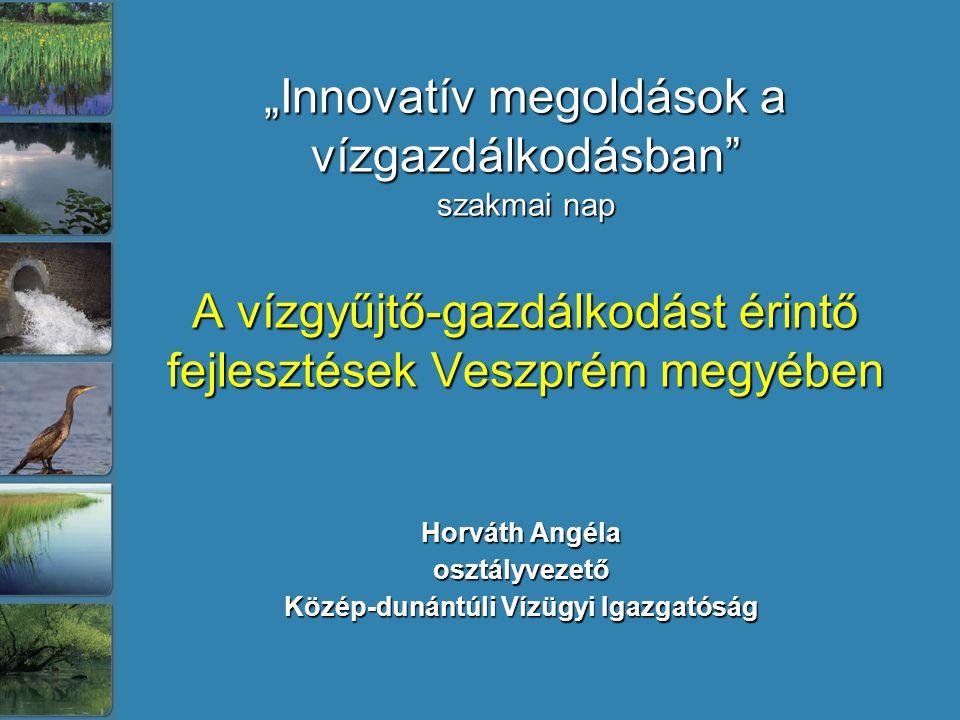 Horváth Angéla osztályvezető Közép-dunántúli Vízügyi Igazgatóság