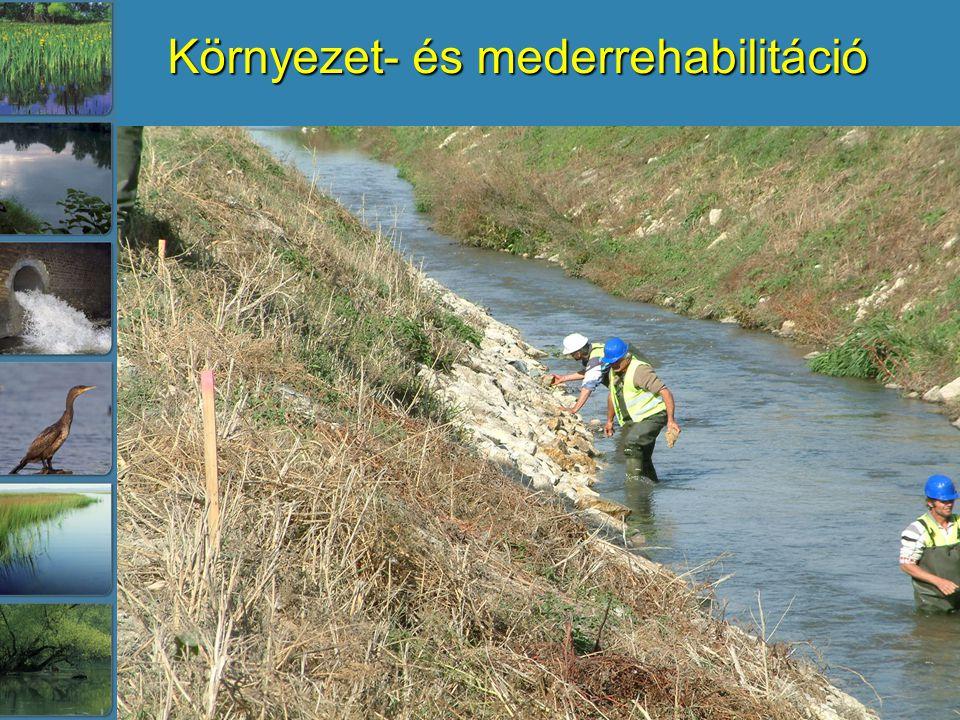 Környezet- és mederrehabilitáció