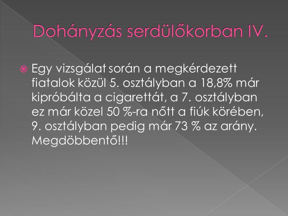 Dohányzás serdülőkorban IV.