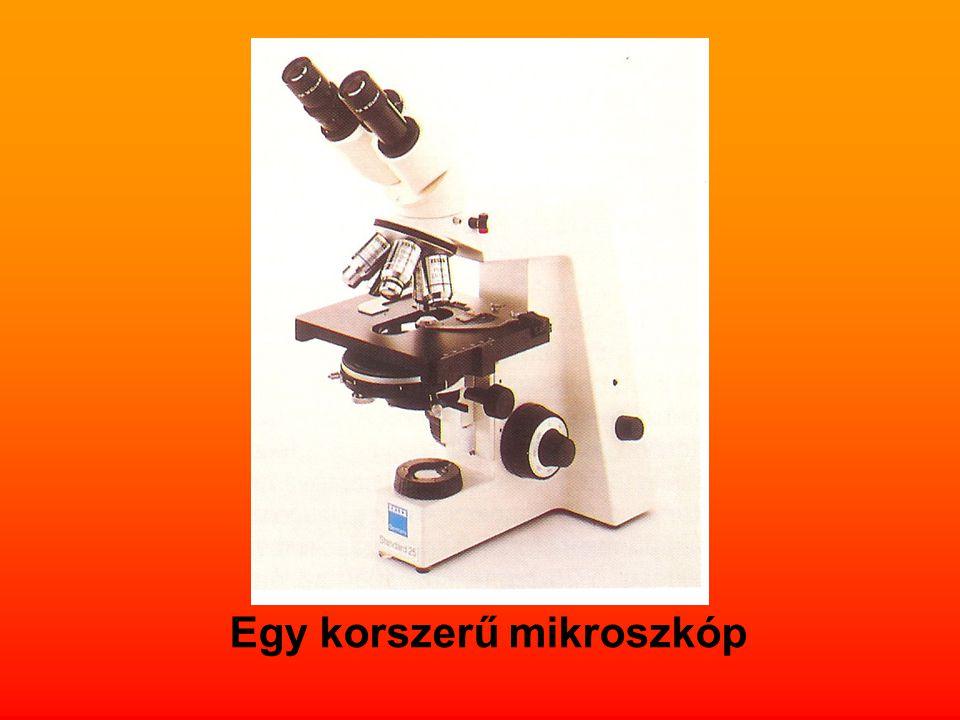 Egy korszerű mikroszkóp