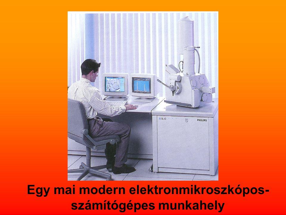 Egy mai modern elektronmikroszkópos-számítógépes munkahely