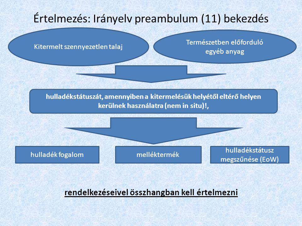 Értelmezés: Irányelv preambulum (11) bekezdés