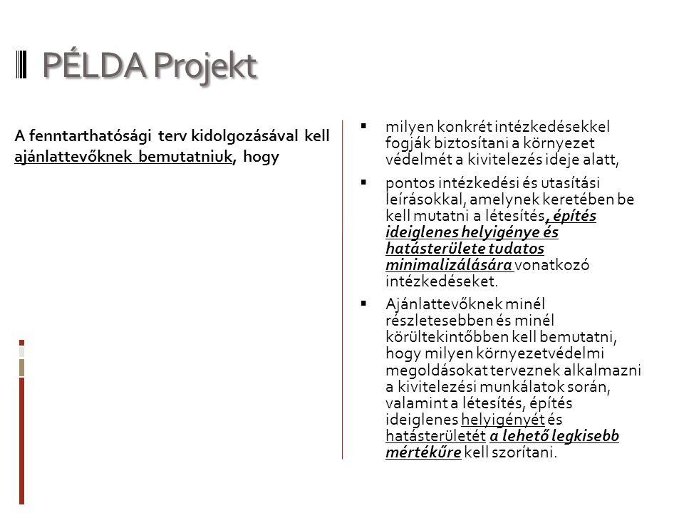 PÉLDA Projekt milyen konkrét intézkedésekkel fogják biztosítani a környezet védelmét a kivitelezés ideje alatt,