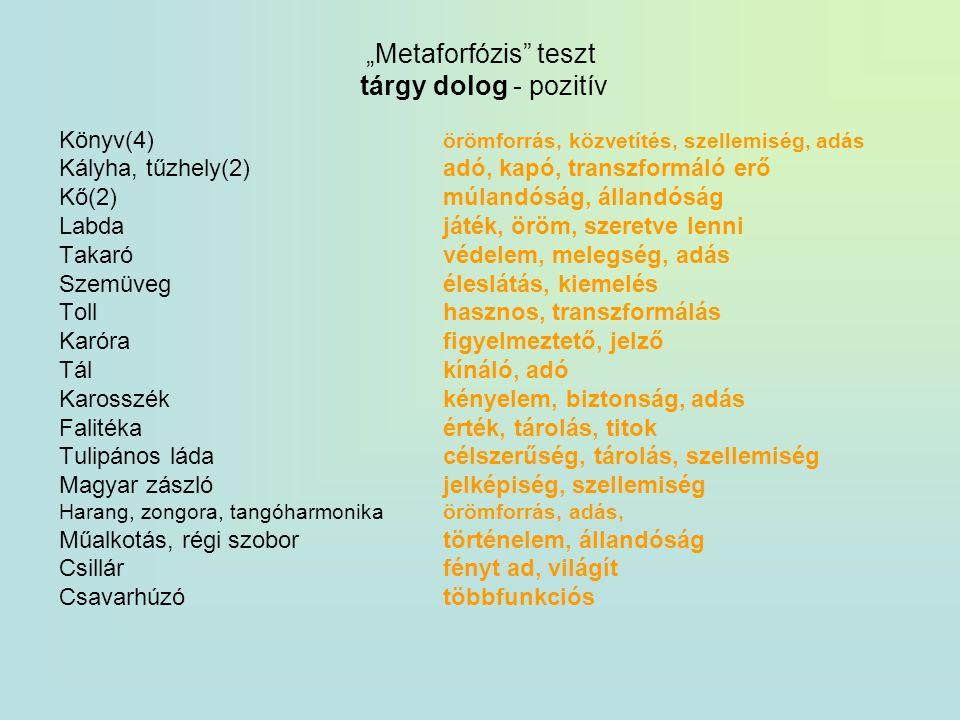 """""""Metaforfózis teszt tárgy dolog - pozitív"""