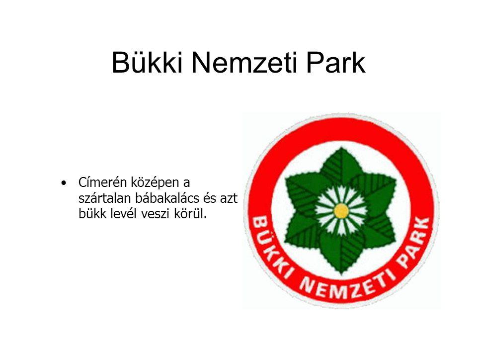 Bükki Nemzeti Park Címerén középen a szártalan bábakalács és azt bükk levél veszi körül.
