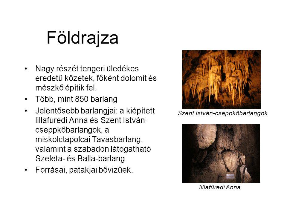 Földrajza Nagy részét tengeri üledékes eredetű kőzetek, főként dolomit és mészkő építik fel. Több, mint 850 barlang.