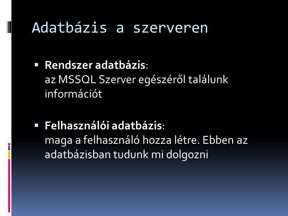Adatbázis a szerveren Rendszer adatbázis: az MSSQL Szerver egészéről találunk információt.