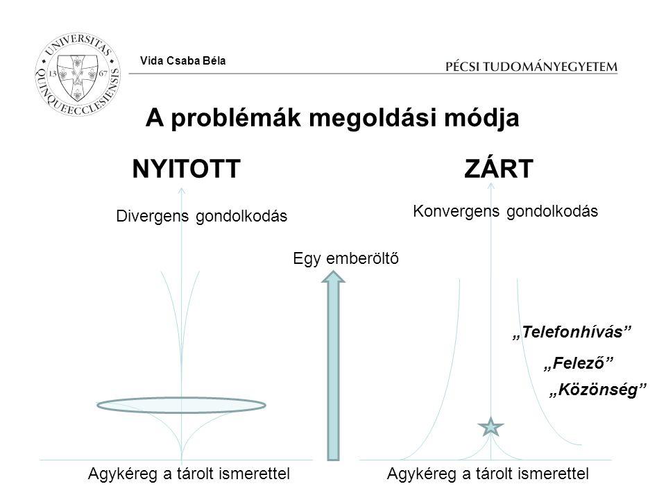 A problémák megoldási módja