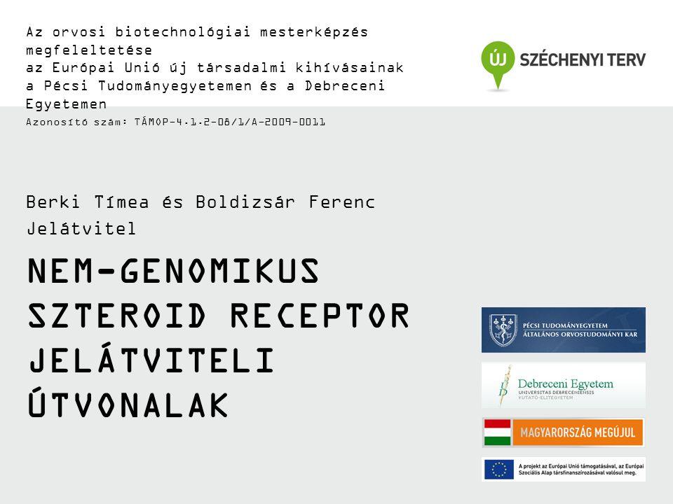 Nem-genomikus szteroid receptor jelátviteli útvonalak